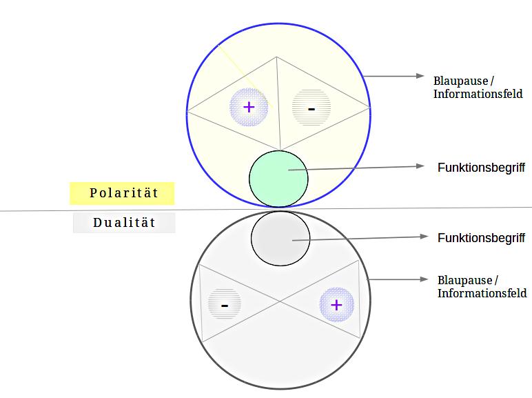 kosmofunktion-1.png